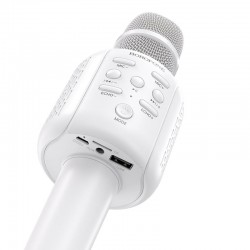 Microphone Karaoke...